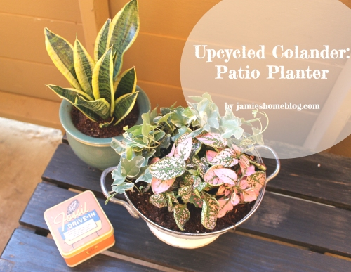 upcycle a colander into a planter