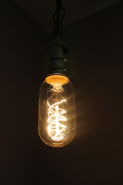 spiral filament edison bulb